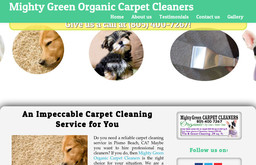 Mighty Green Organic Carpet Cleaners On Price St In Pismo