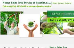Hector Salas Tree Service of Pasadena