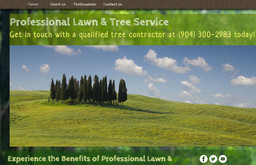 Professional Lawn & Tree Service