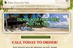 Island Wide Palm Trees