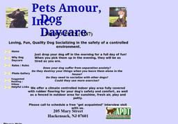 Pets Amour Inc Dog Daycare
